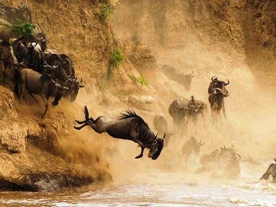 Ruaha National Park-deoadventure