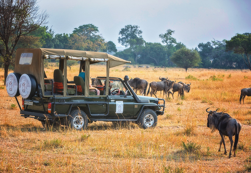 great-migration-safaris-in-style-itineraries-trips-nasikia-camps-game-drives-tours-deoadventure-ndutu