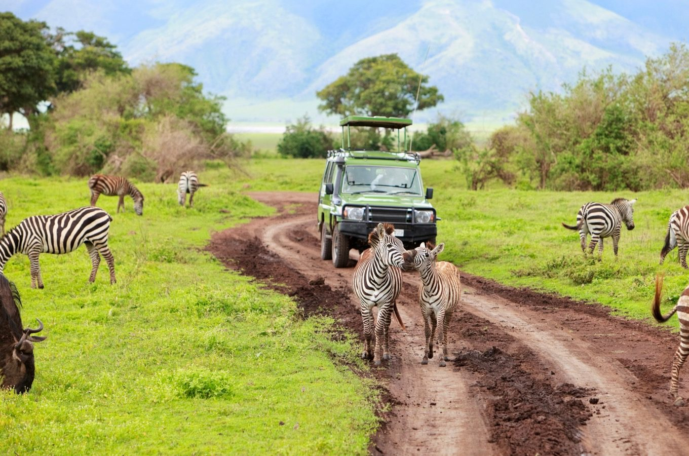 safari-through-the-national-parks-lake-manyara-serengeti-ngorongoro-deoadventure